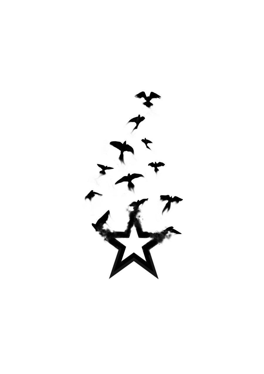 Star Bird Tattoo By Firedownbelow Birds Tattoo Star Tattoos