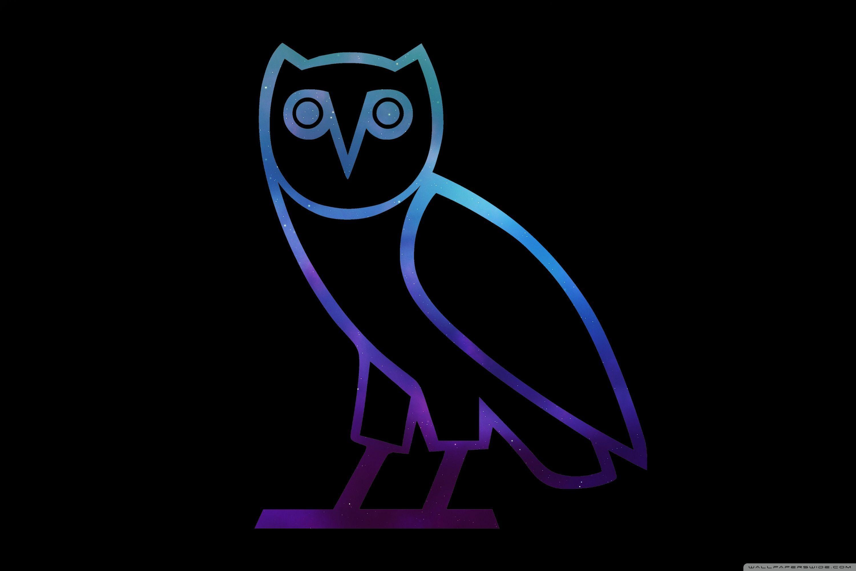 60 Blue Owl Wallpapers Download At Wallpaperbro Drake Iphone Wallpaper Ovo Wallpaper Owl Wallpaper