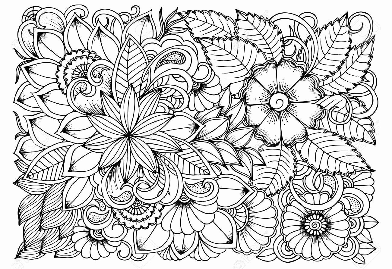 Image Result For Free Printable Coloring Pages For Adults Advanced Fall Coloring Pages Deer Coloring Pages Summer Coloring Pages