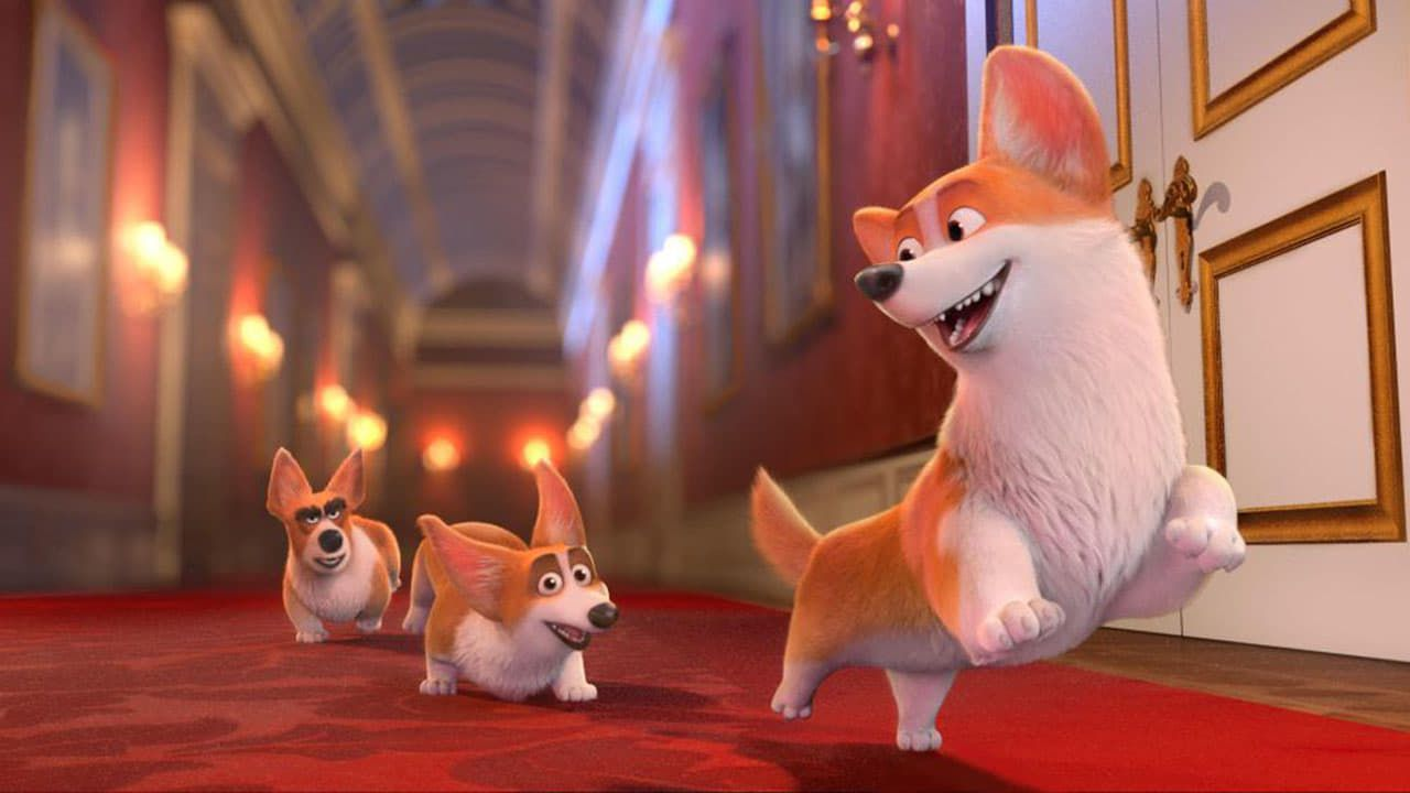 The Queen S Corgi 2019 Online Latino Hd Films Complets Chien Abandonne Dessin Anime Streaming