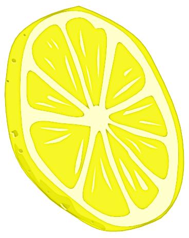 Lemon Slice Lemon Slice Fruit Lemon