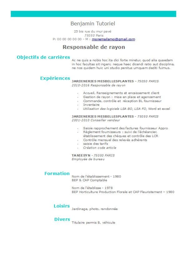 cv type sous libre office