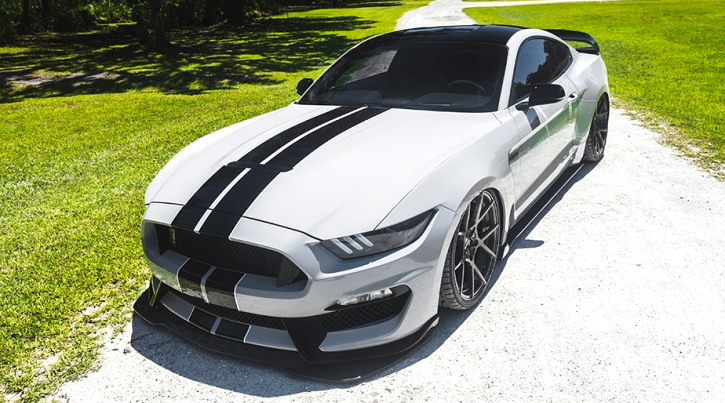 custom 2016 mustang shelby gt350 video