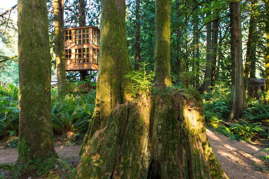 Treehouse Point, a treehouse bed and breakfast owned by