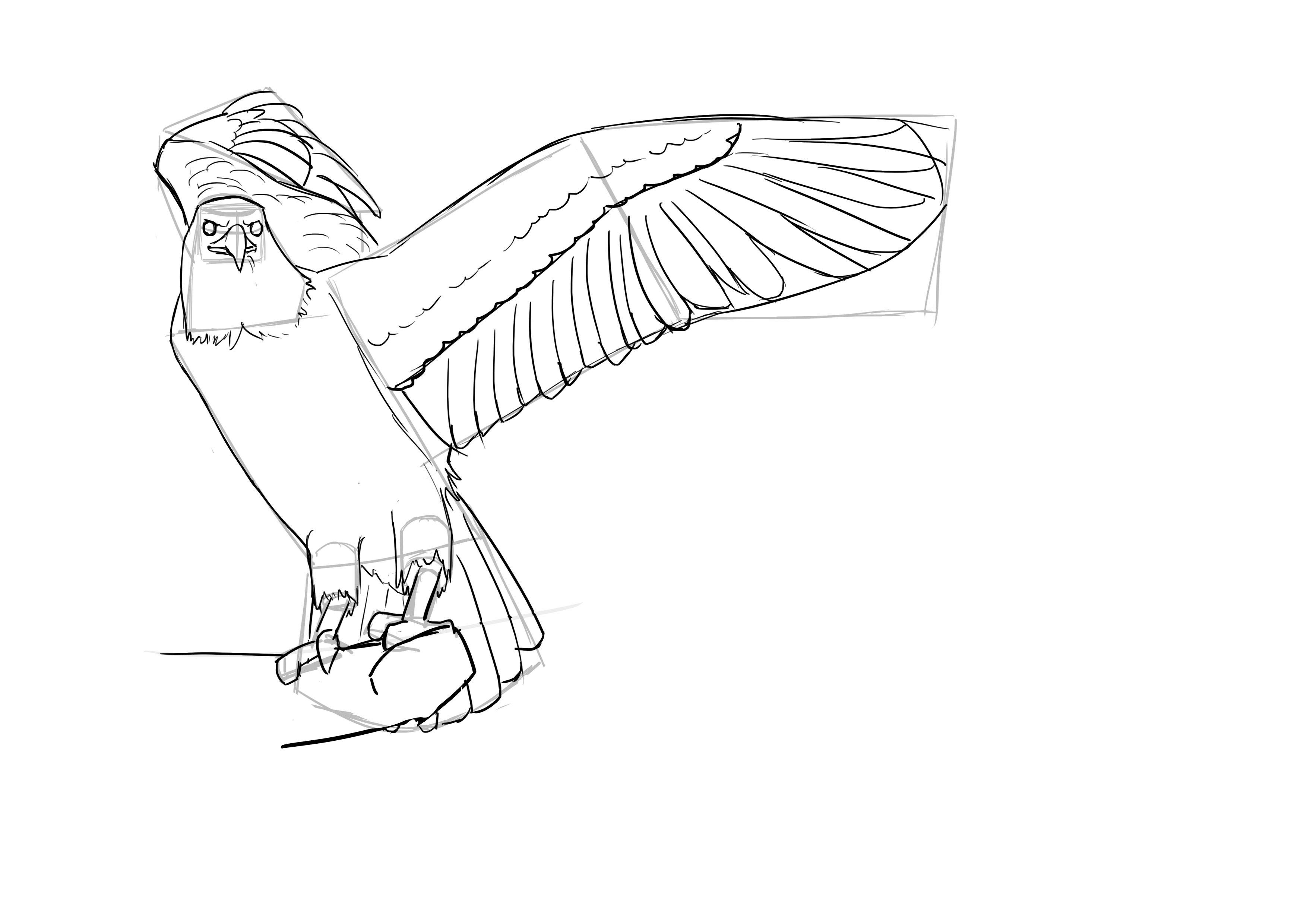 Comment Dessiner Un Oiseau Avec Images Dessin Oiseau Comment