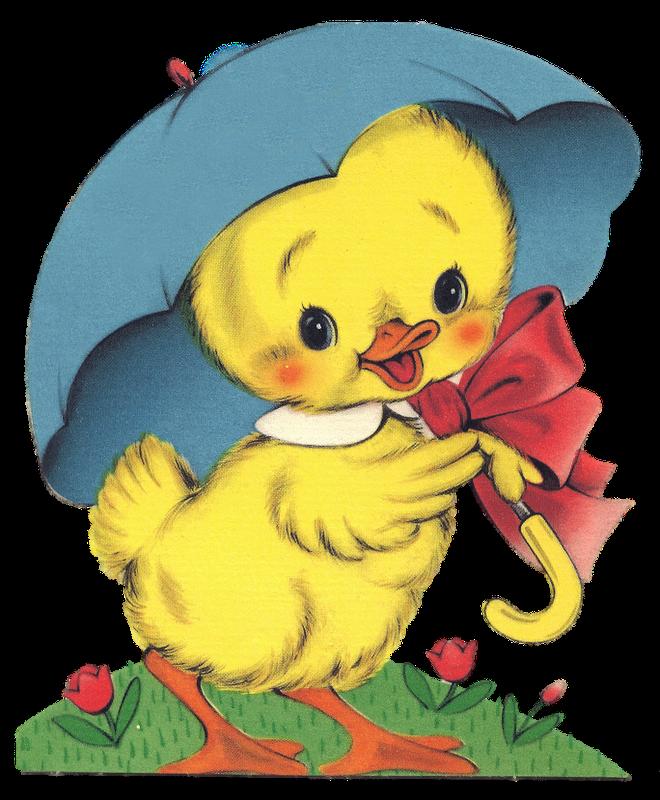 муцениеце цыплята открытки имеют