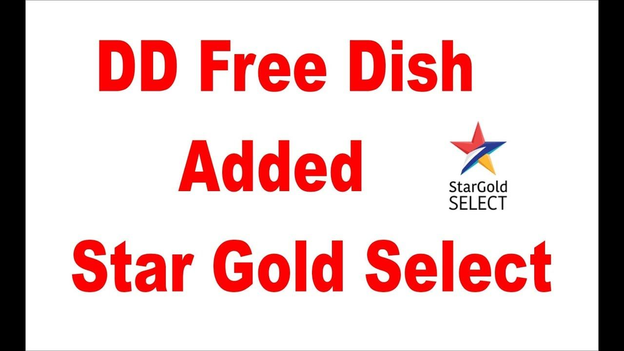STAR GOLD SELECT ON DD FREE DISH | star look | The selection