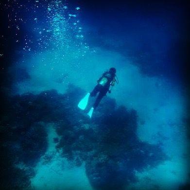 #greatbarrierreef #cairns #australia #snorkeling #diving by sharonseuren http://ift.tt/1UokkV2