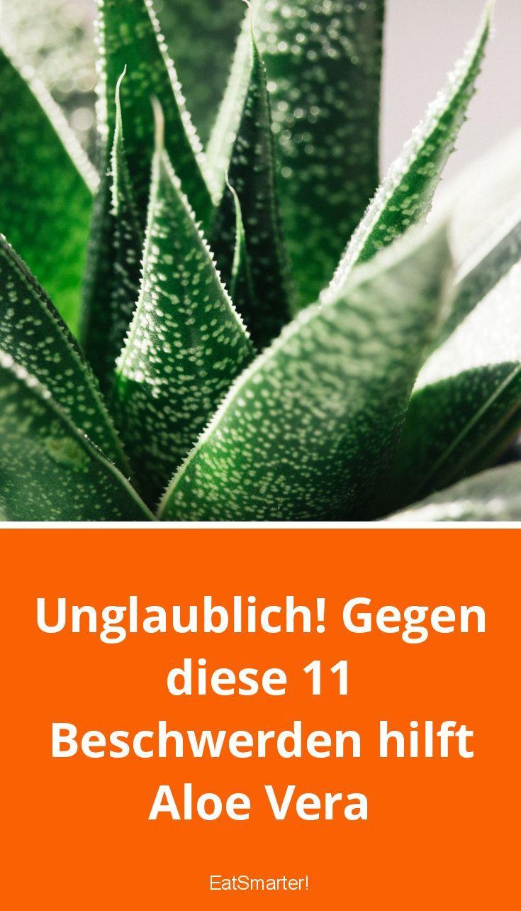 Unglaublich! Gegen diese 11 Beschwerden hilft Aloe Vera | eatsmarter.de
