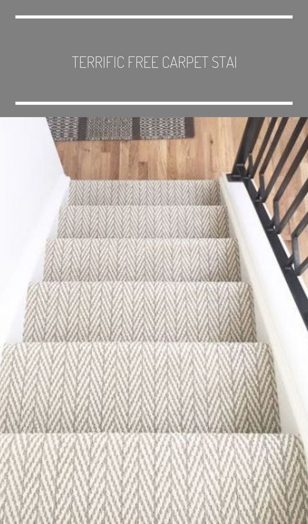 Terrific Free Carpet Stairs basement Style One of the fastest approaches to reva... - carpet-stairs -  Terrific Free Carpet Stairs basement Style One of the fastest approaches to revamp your tired old s - #approaches #Basement #Carpet #carpetstairs #fastest #free #hausmithallekaufen #reva #Stairs #Style #Terrific