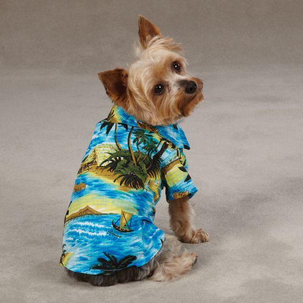 Hawaiian Shirt For Dogs Aloha Camp Shirt By Casual Canine Blue