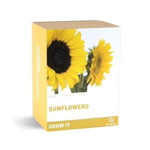 You Are My Sunshine Grow Kit Grow Kit Giant Sunflower Seeds Dot And Bo