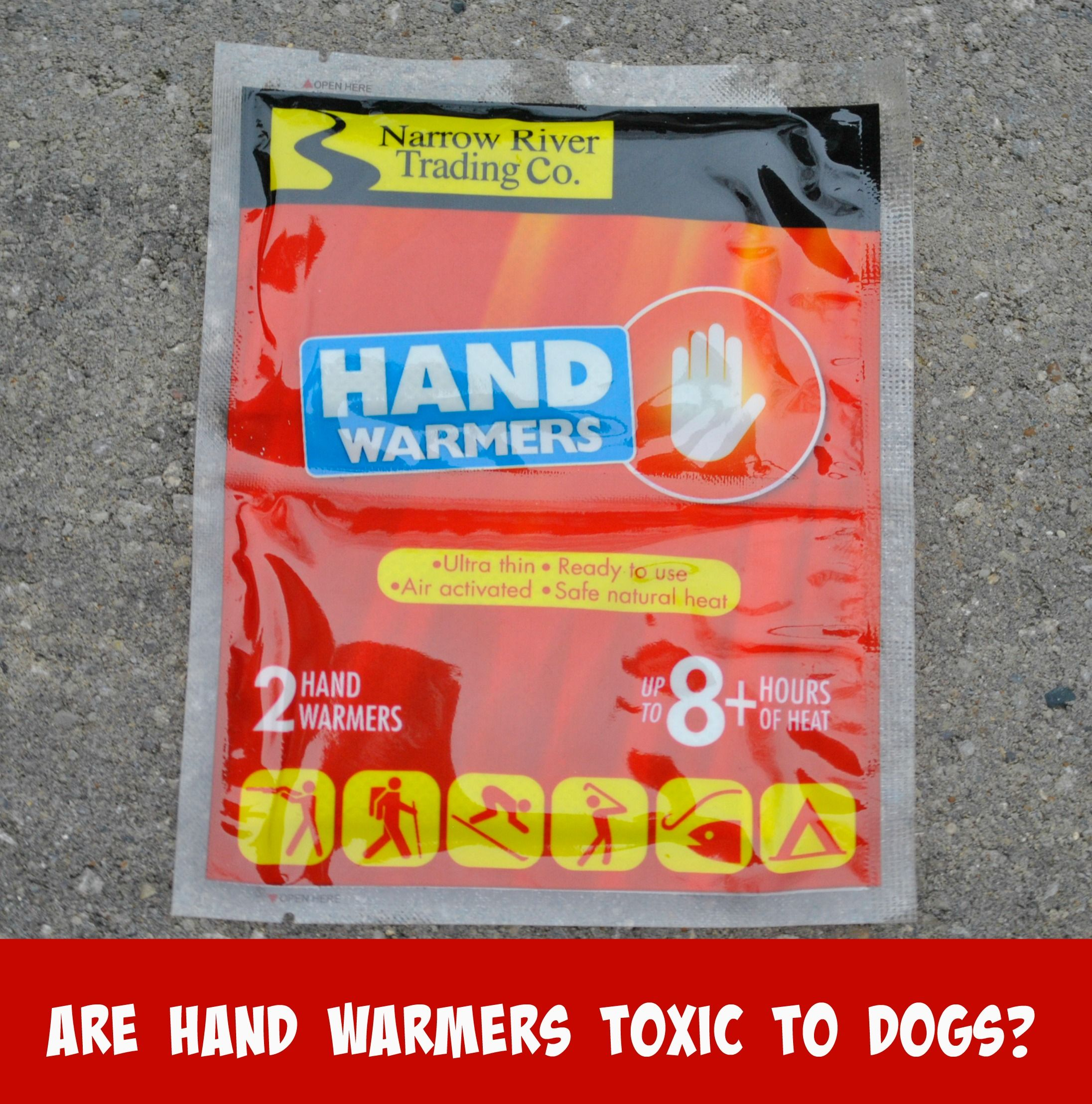 Are Hand Warmers Toxic To Dogs My Brown Newfies Hand Warmers Warmers Dog Shots