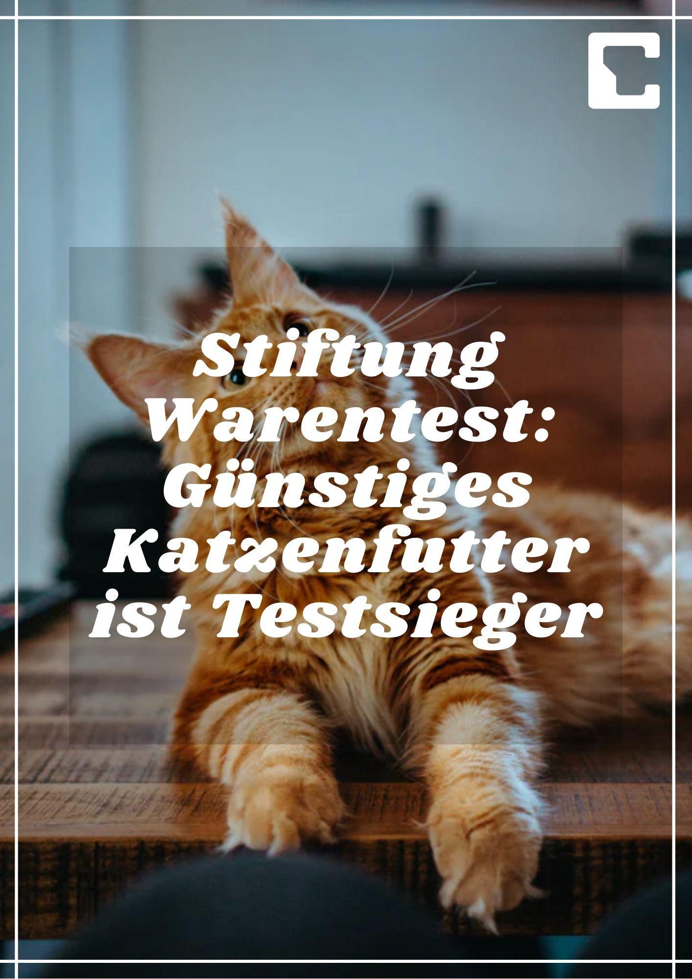 Perfect Fit Katzenfutter Trockenfutter Indoor Fur Hauskatzen Adult