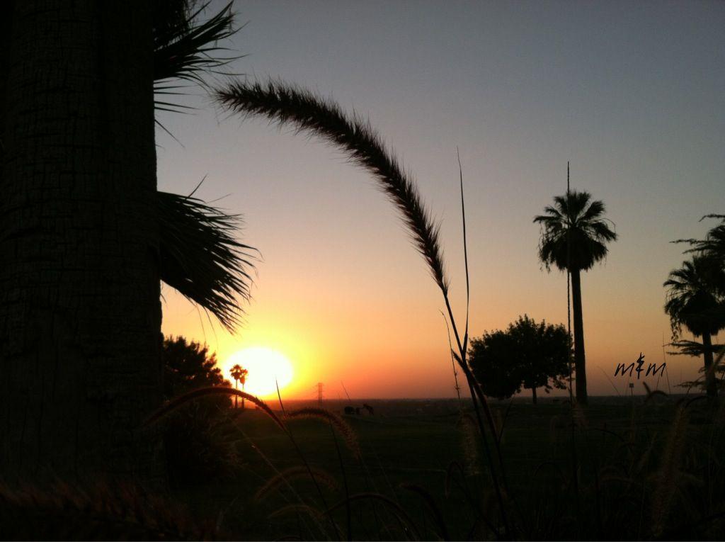 ............My Sundown passion...........