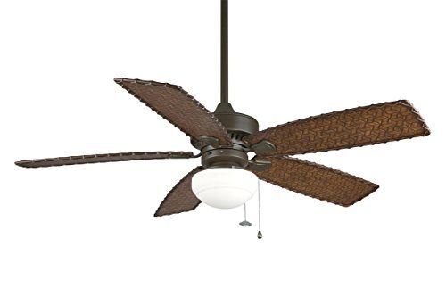 Hunter 59219 48 Leoni Ceiling Fan With Light With Handheld Remote
