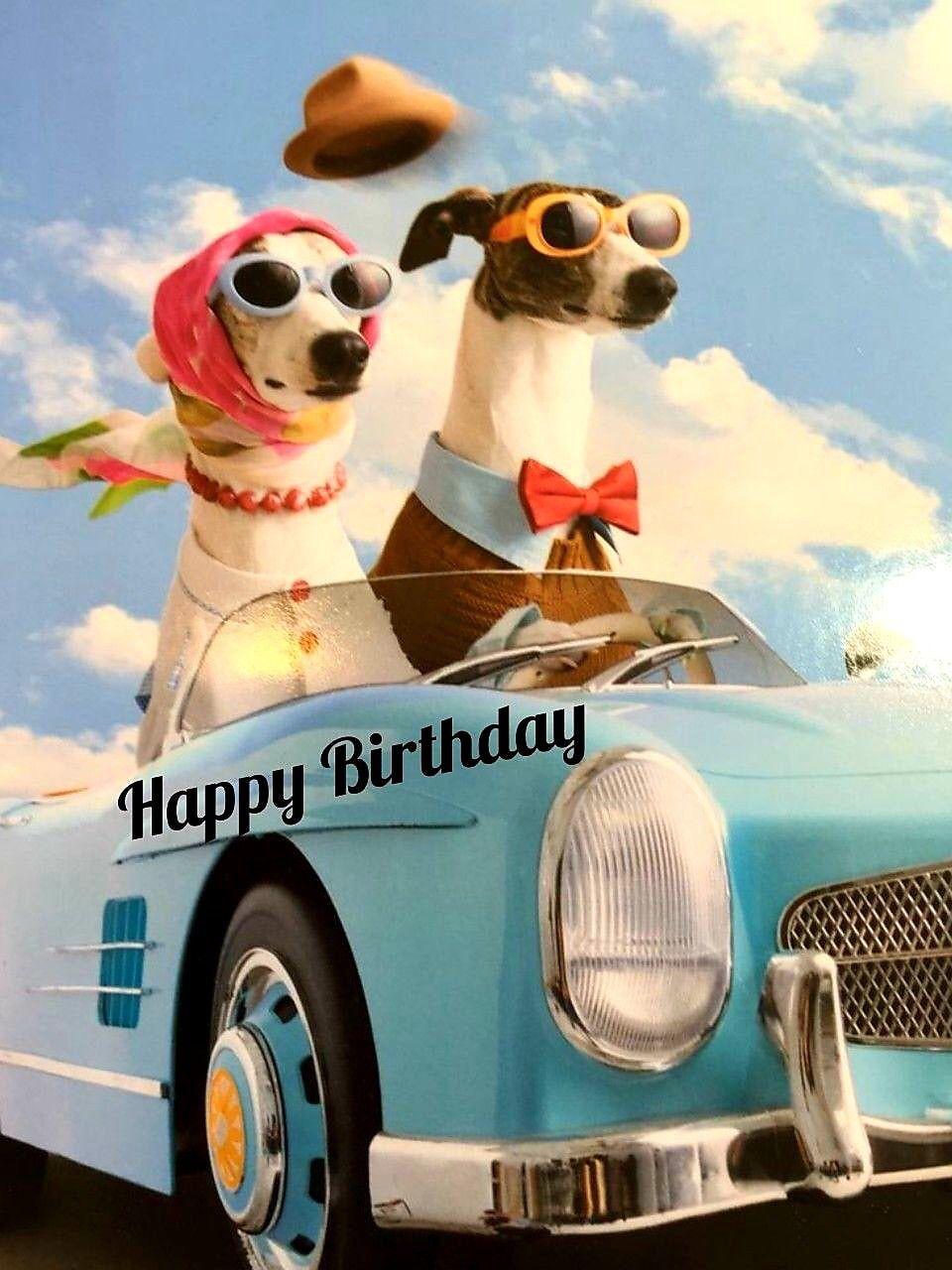 Pin Von Mariechen Auf Happy Birthday Alles Gute Zum Geburtstag