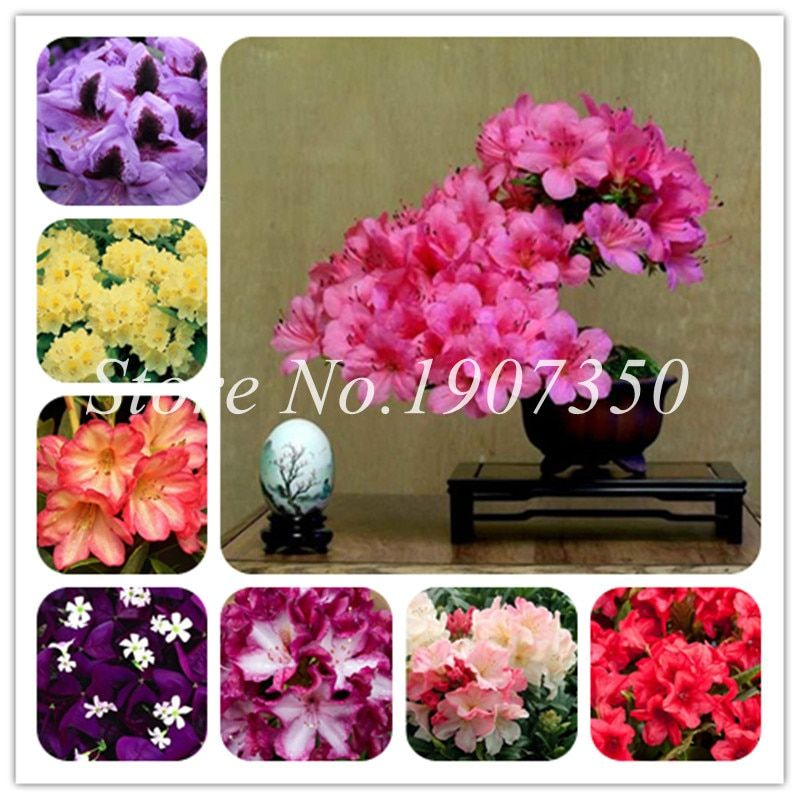 Flowers Plant Peony Decoration Painting Winter Earmuffs Ear Warmers Faux Fur Foldable Plush Outdoor Gift