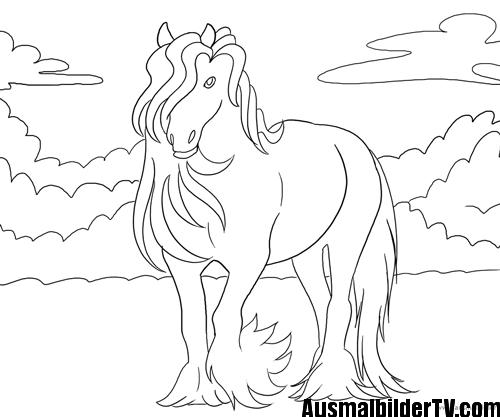 schöne ausmalbilder pferde  malvorlagen pferde
