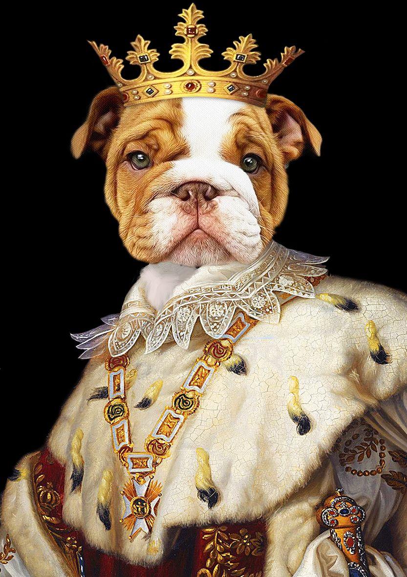 Your Pet Is A King Renaissance Pet Portrait Royal Pet Portrait Custom Pet Portrait Pet King Anthropomorphic Pet Art Cat Painting Dog King Animaux En Costumes Portraits De Chiens Dessin Chat