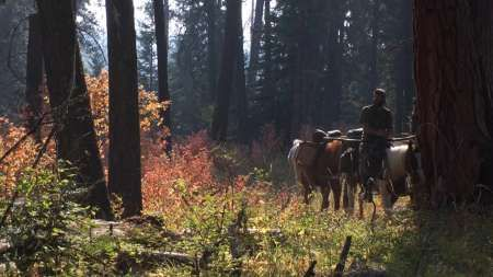 Idaho BHA Member Clay Hayes Release Trailer For The Untamed