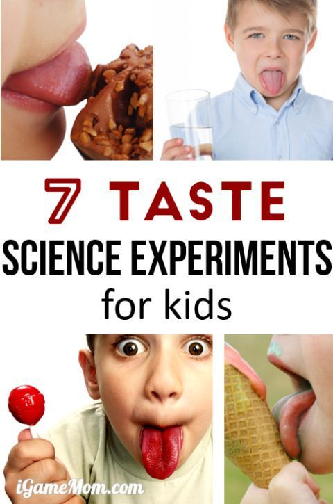 Fun science experiments for kids to learn about sense of taste, why can we taste different flavors? Does nose play a role in taste? Wonderful resource for 5-senses study with STEM activities for kids of all ages, from preschool, kindergarten, to school age.