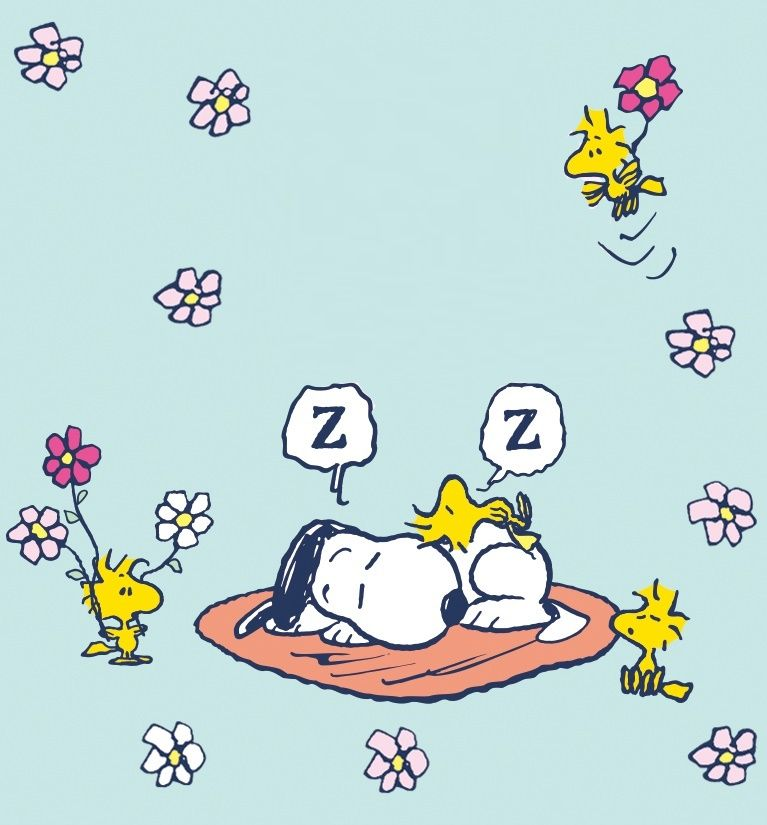 Die besten 25 gute nacht bilder peanuts ideen auf pinterest charlie brown zitate - Charlie brown zitate ...