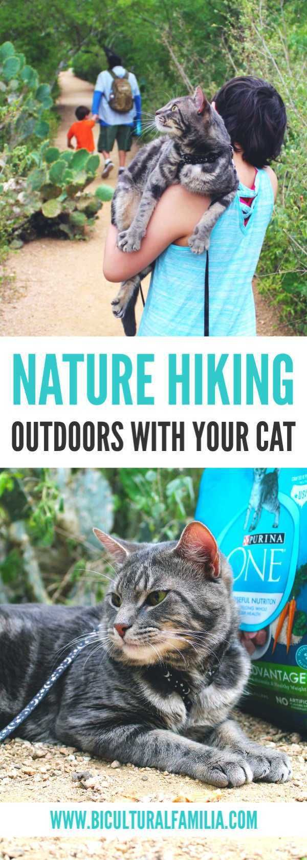 Get Your Cat Outdoors Active With Purina One Cats Pets Purina