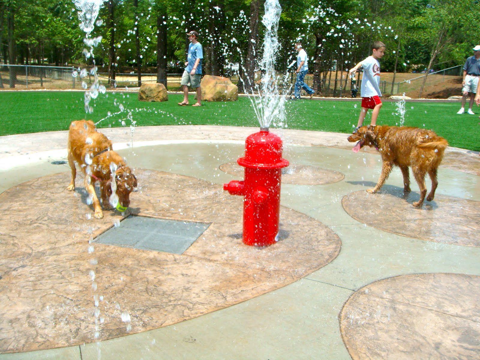 Related image (With images) Dog park, Dog park design
