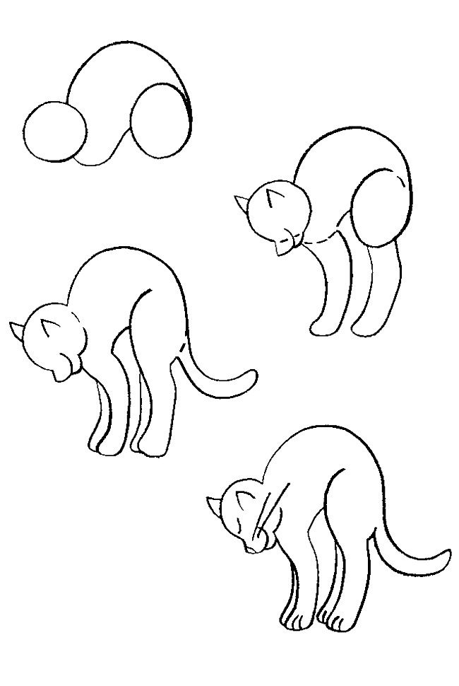 How to draw a cat #4 if u want the challenge