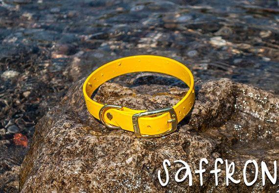Waterproof Dog Collar in Bright Yellow