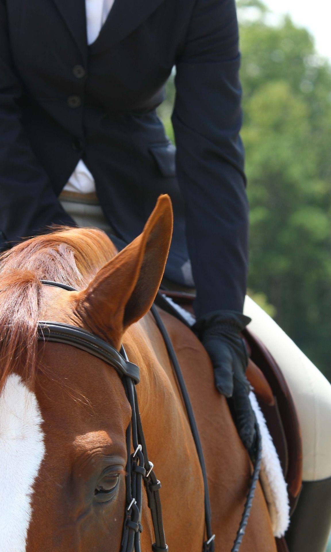 Redheaded Ponies <3