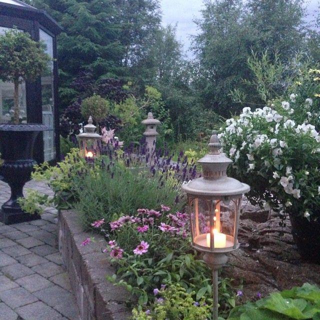 #ShareIG Right now in my gardenGod natt skjønne følgere og takk for koselige spor