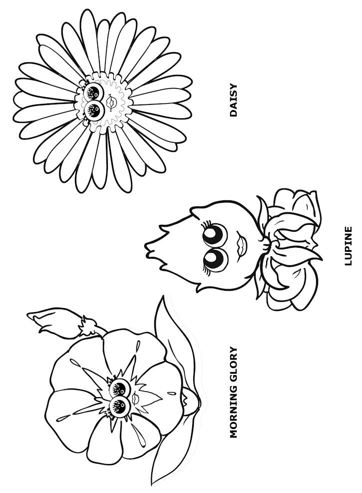Daisy Flower Friends Coloring Sheets Coloring Pages