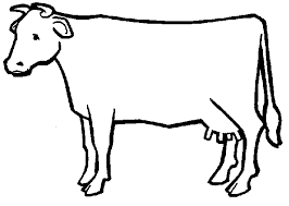 Image Result For Outline Drawings Of Animals Outline Drawings Cow Appreciation Day Golden Calf