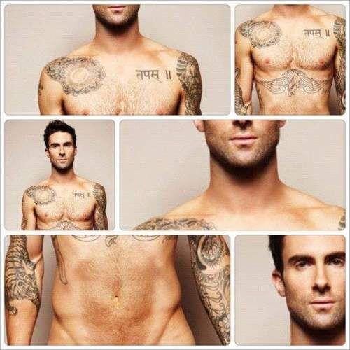 Hottie Adam Levine Adam And Eve Celebrities Male