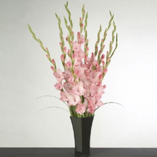Pink Gladiolus In Vase Flowers Arrangement Pinterest Gladioli
