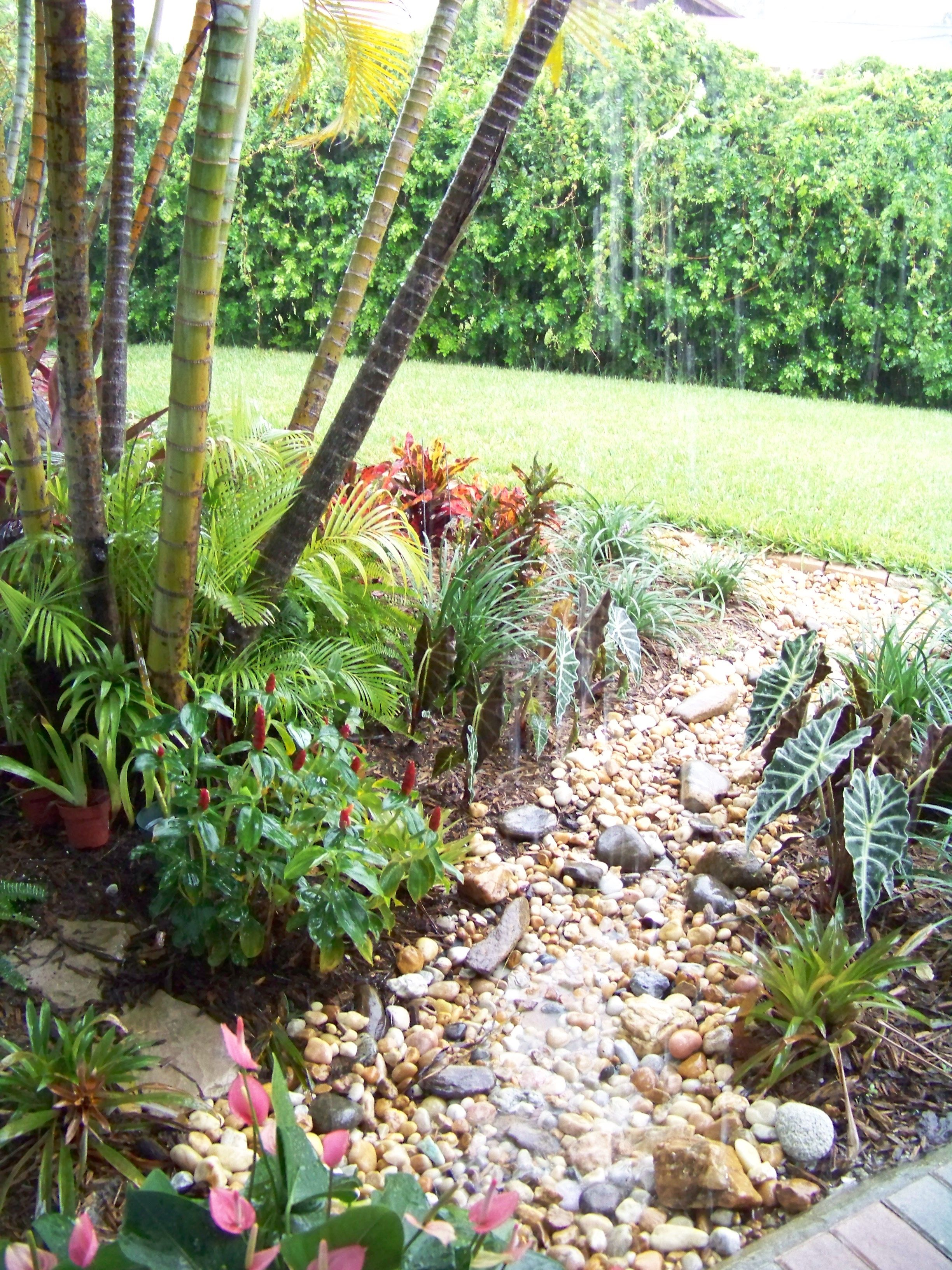 """A """"dry river bed"""" I put in my front garden to catch the"""