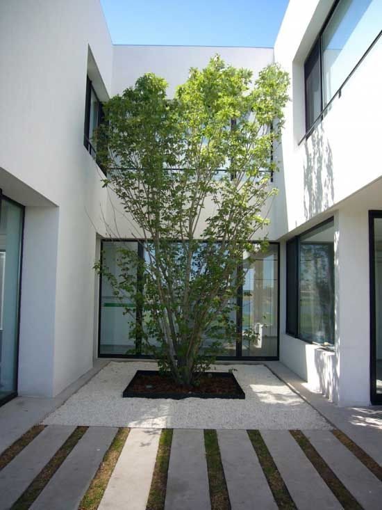 for down the side of the house that sits closest to the fence. garden design