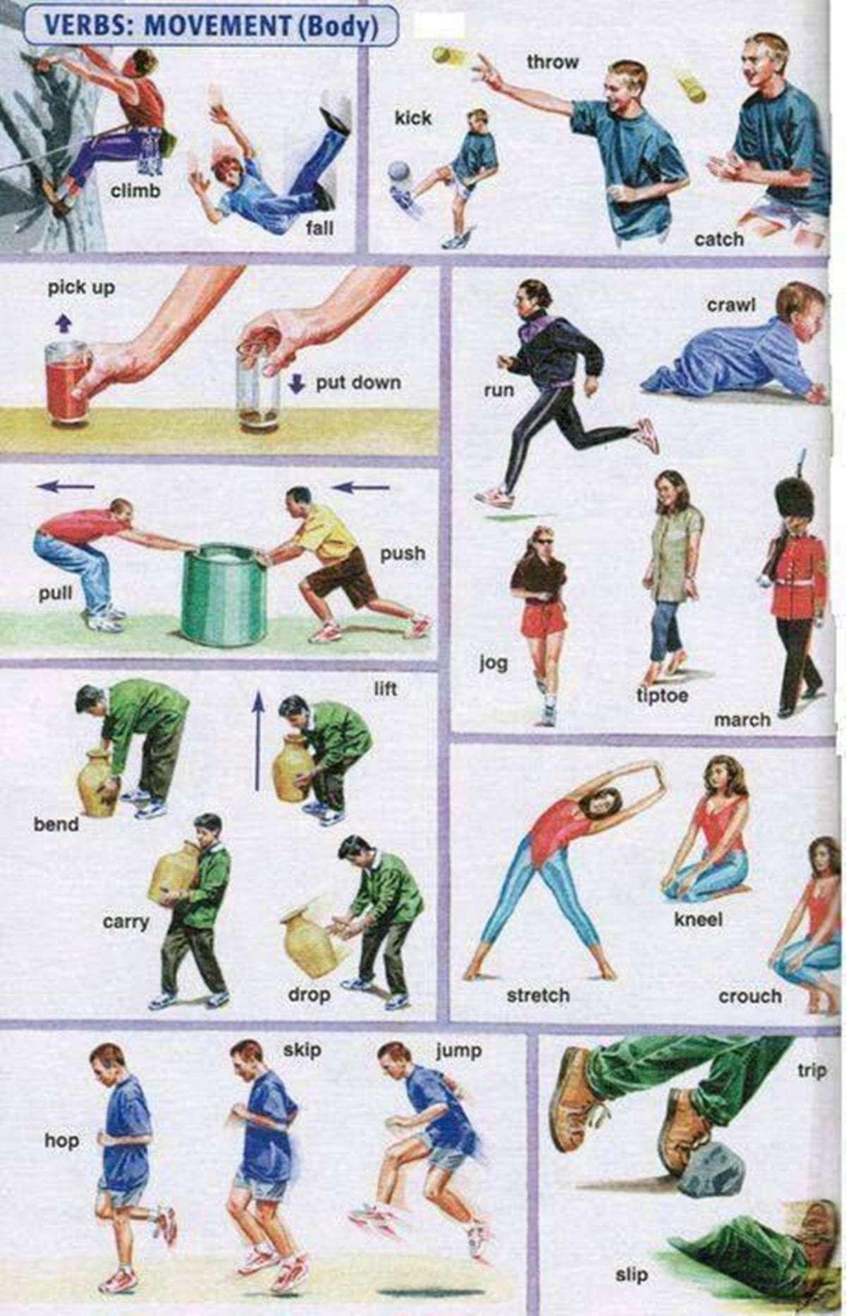 English Verbs Of Body Movement