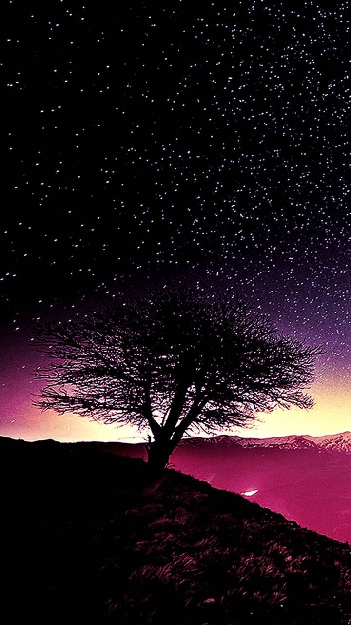 Starry Sky wallpaper by _GIVENCHY_ - 16 - Free on ZEDGE™