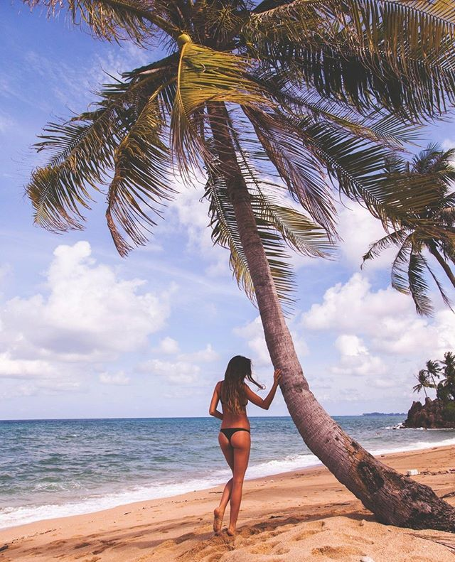Island Dreaming Headed Overseas Don T Forget To Take Your Perfect Travel Companion With You Head Our Website Check Out All Bouddi Body Original Balm