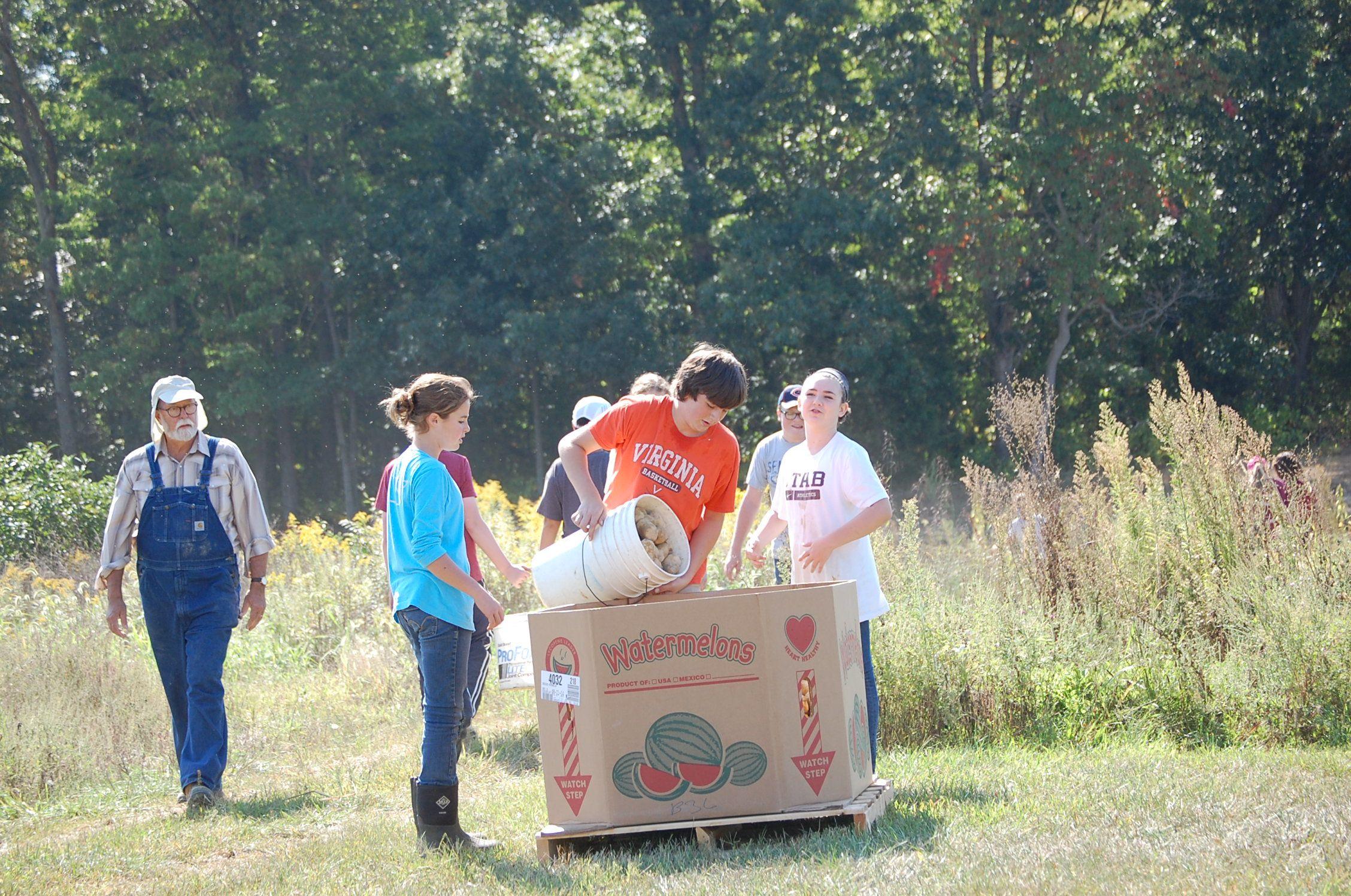 The Volunteer Farm Volunteer, Food pantry, Soup kitchen