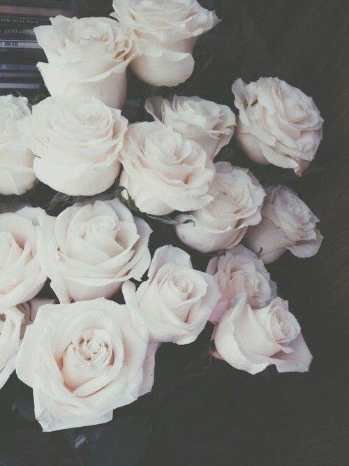 White Roses Wallpaper Flowers White Roses Grunge Photography