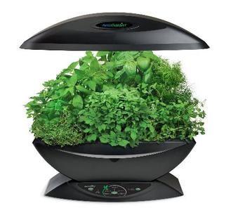 Aerogarden 7 Pod Indoor Garden With Gourmet Herb Seed Kit 400 x 300
