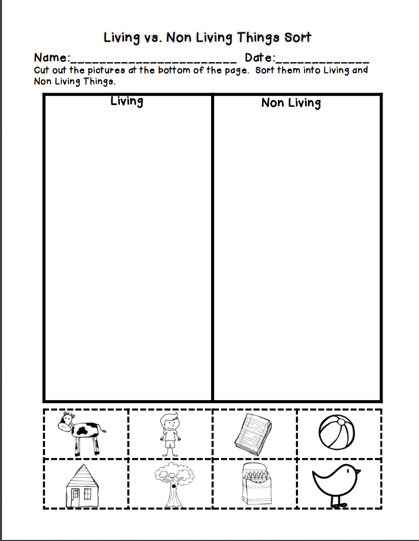 worksheet Living Vs Nonliving Worksheet living vs non freebie school pinterest kindergarten freebie
