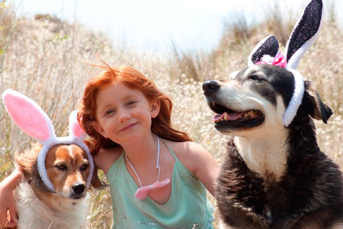 Margaret River Hideaway And Farmstay Is Kid Fiendly And Dog Friendly Dog Friends Dog Cat Pets