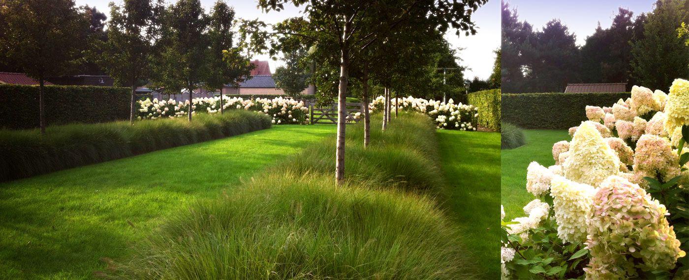 Sobere rustgevende tuin style modern pinterest tuin for Strakke tuinen met siergrassen