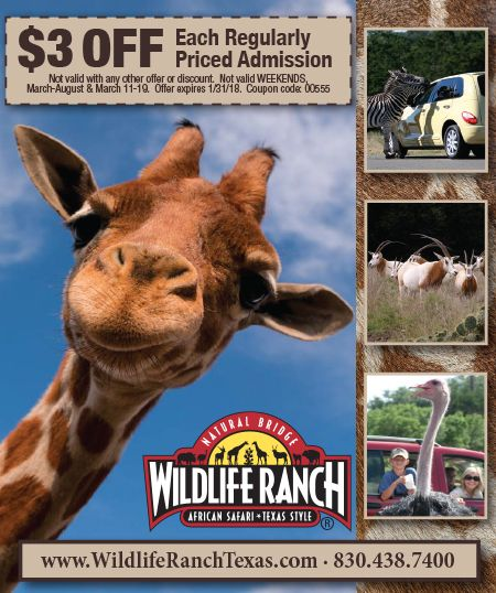 Coupons Natural Bridge Caverns San Antonio Attractions San Antonio Vacation