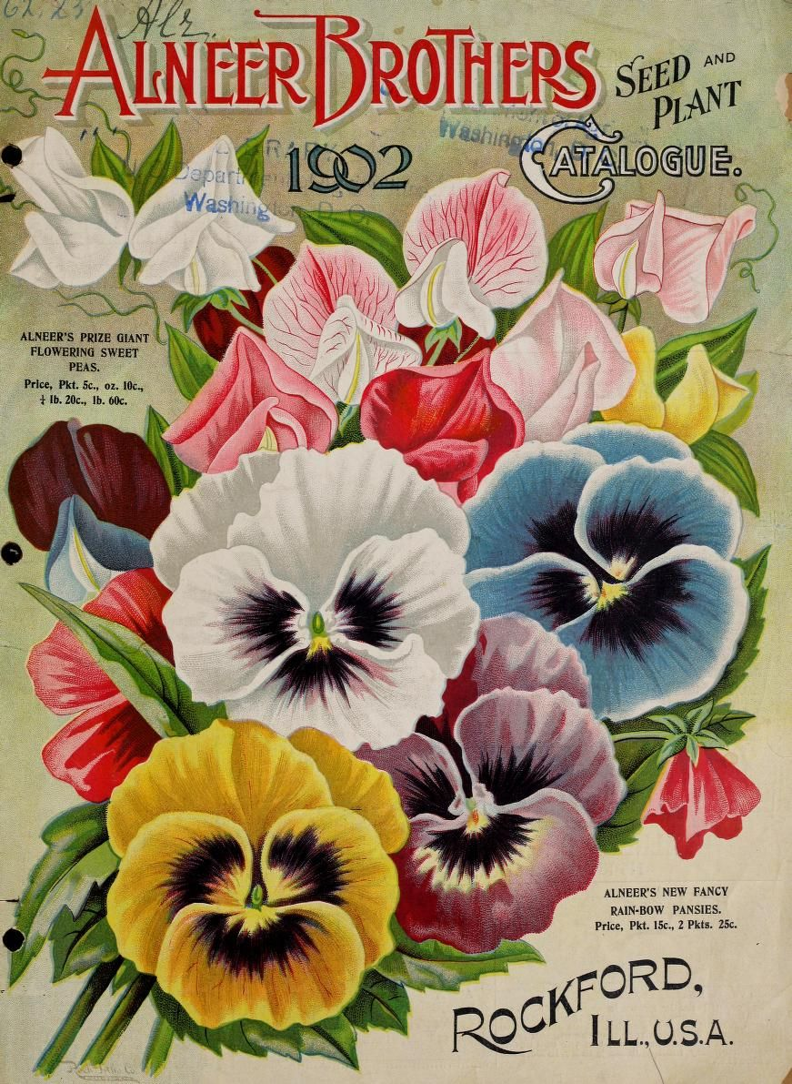 Alneer Brothers seed and plant catalogue for 1902